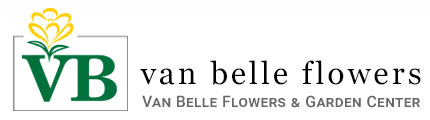 Home Page Van Belle Flowers